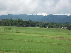 A view of Jampui Hills in the East from the plains of Kanchanpur.jpg