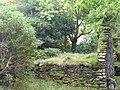 Abandoned houses near Coomerkane - geograph.org.uk - 1499710.jpg