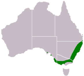 Description de l'image Acacia-longifolia-range-map.png.