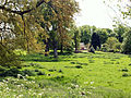 Across meadow to Washdyke Lane, Belton (nr Grantham) - 02.jpg