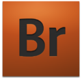 Adobe Bridge CS4 icon.png