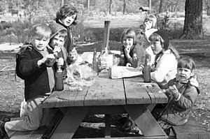 Picnic table - Wooden table, circa 1964