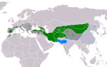* Green: Current resident breeding range. * Green ?: May still breed. * Green R: Re-introduction in progress. * Blue: Winter range; rare where hatched blue. * Dark grey: Former breeding range. * Dark grey ?: Uncertain former breeding range.