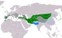 *Green: Current resident breeding range. *Green ?: May still breed. *Green R: Re-introduction in progress. *Blue: Winter range; rare where hatched blue. *Dark grey: Former breeding range. *Dark grey ?: Uncertain former breeding range.