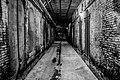 Alcatraz (19011910070).jpg
