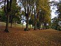 Aldershot Municipal Gardens.jpg