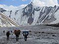 Ali Camp (Gandagoro La).jpg