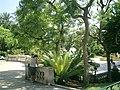 Allée des boulingrins - monaco - panoramio - kajikawa.jpg
