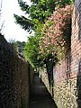 Alleyway east of Elvaston Road (3) - geograph.org.uk - 843432.jpg