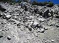 Alpine glacial till (Pleistocene; Lee Vining Canyon, Yosemite National Park, California, USA) 2.jpg