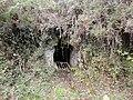 Altamira 2 mehategia.jpg