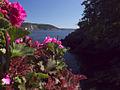 American Hiking Society Instagram Takeover- San Juan Islands National Monument in Washington (17917668168).jpg