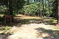 Amphitheater 1, General Coffee State Park.jpg