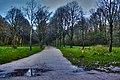 Amsterdamse Bos - panoramio.jpg