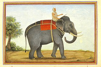 Mahout - An image of the elephant keeper in India riding his elephant from Tashrih al-aqvam (1825).
