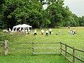 An organised picnic near Ashridge Monument - geograph.org.uk - 1376365.jpg
