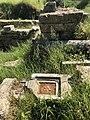 Ancient theatre of Sparta 04.jpg
