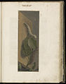 Animal drawings collected by Felix Platter, p2 - (28).jpg
