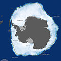 Antarctic Grows.jpg