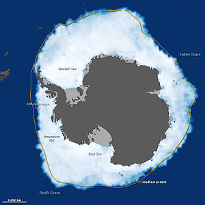 Antarctic sea ice - Image: Antarctic Grows
