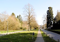 Anton-Kurze-Allee in Aachen