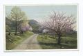 Apple Blossom Time (NYPL b12647398-74254).tiff