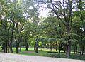 Arkādijas parks 8, Rīga, Ojāra Vācieša iela.JPG