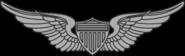 ArmyAvnBadge