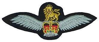 Aircrew brevet - Army Air Corps Pilot brevet