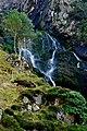 Assarnacally Waterfall - Top portion - geograph.org.uk - 1157299.jpg