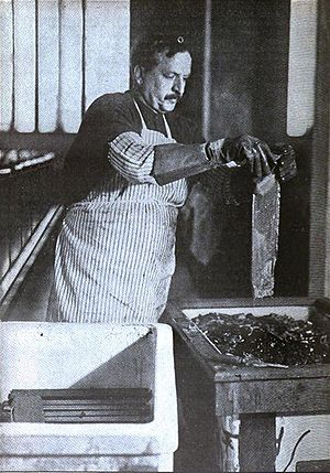 Metallurgical assay - 1916 photograph of an assayer performing an electrolysis test on a gold sample at the United States Assay Office in New York.