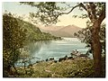 At Innisfallen, Killarney. County Kerry, Ireland LOC 4427419898.jpg