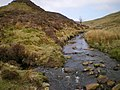 At the confluence of the Nant Lwyd and the Afon Cedig - geograph.org.uk - 1265546.jpg