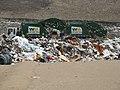 At the landfill.jpg