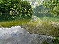 Ausblick Bohinj jezero (41139417075).jpg