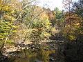 Autumn Leaves Cox Mt Trail Fews Ford 8373 (3541935913).jpg