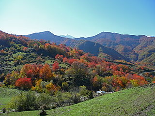 Autunno, autumn, Herbst 2007, my most popular photo.jpg