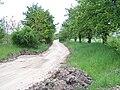 Bývalá silnice Horní Měcholupy - Uhříněves.jpg