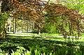 BGM Arboretum.jpg