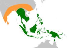 Banana ancestors (Musa acuminata and Musa balbisiana) original range.png