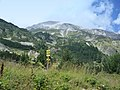 Bansko, Bulgaria - panoramio (48).jpg