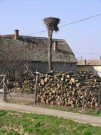 Baranybáni gólyafészek.JPG