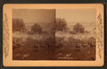 Battles of Gettysburg, from Robert N. Dennis collection of stereoscopic views.png