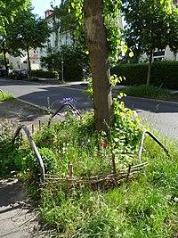 Baumscheibe wikipedia - Gartenbau beschattet ...