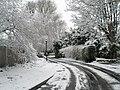 Bedhampton's late, late snowfall - geograph.org.uk - 752434.jpg