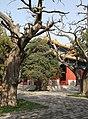 Beijing-Konfuziustempel Kong Miao-62-gje.jpg
