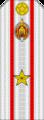 Belarus MIA—06 Major rank insignia (White).png