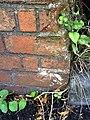 Benchmark on Foxhall Road railway bridge - geograph.org.uk - 1998700.jpg