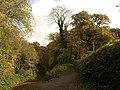 Bend on Blaxton Lane - geograph.org.uk - 1043964.jpg