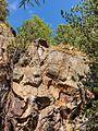 Bergtocht van parkeerplaats bij centrale Malga Mare naar Lago Lungo. Loodrechte rotswand naast het bergpad 01.jpg